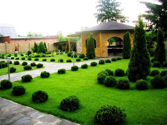 Озеленение территорий