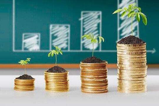 Виды инвестиций и их характеристика