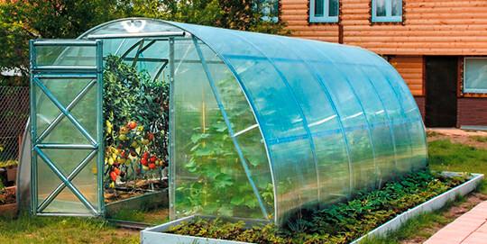 Теплица для выращивания рассады