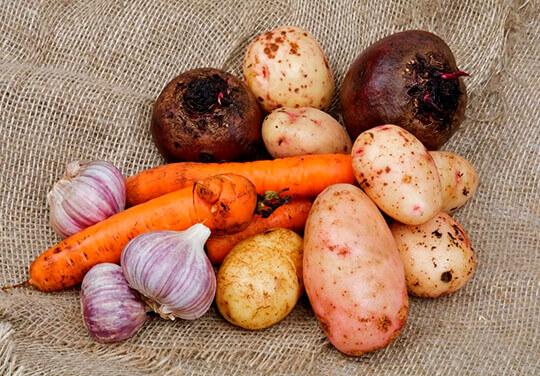 Популярные в России овощи