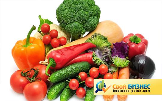 Бизнес-план по выращиванию овощей