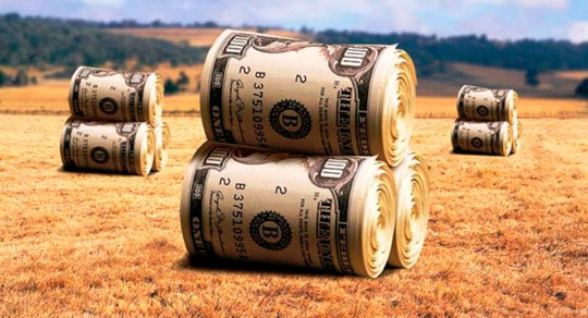 Как взять кредит для ЛПХ